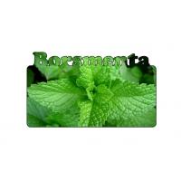 Borsmenta ízű e-liquid